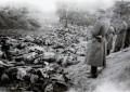 J'ai vu les fosses de Katyn (par Robert Brasillach)