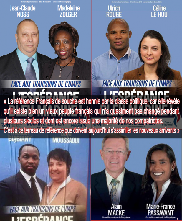 suppuration-ethnique-FN-candidats-départementales-2015--
