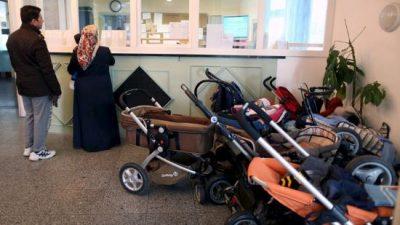 allemagne-360-000-euros-de-prestations-pour-lenvahisseur-syrien-ses-4-femmes-et-23-enfants