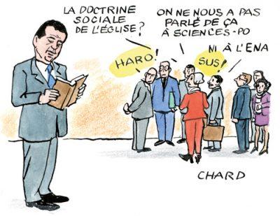 chard-11