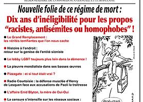 """Toujours plus loin dans la folie : dix ans d'inéligibilité pour les propos """"racistes, antisémites ou homophobes"""" !"""