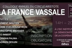 Christophe Brossier - La France vassale des GAFA (vidéo)